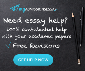 google essay writer info opinion of experts  google essay writer the best estimate professional